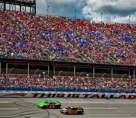 NASCAR - One of the things not to do in the South is diss this great sport.
