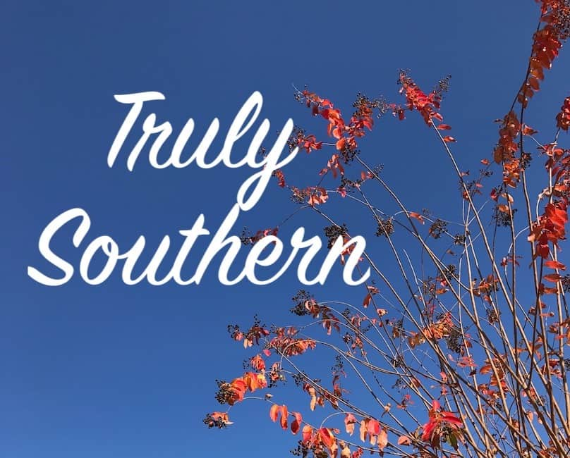 "Blue sky, red leaves on a tree, and ""truly southern"" written in white"