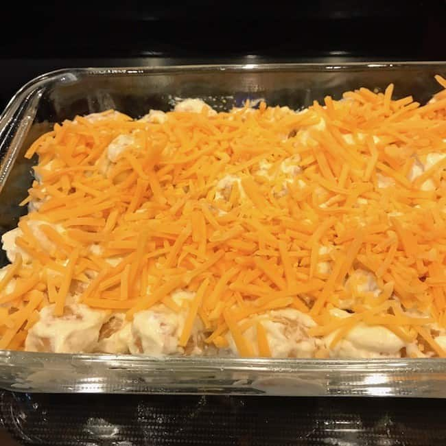 Shredded cheese sprinkled over the top