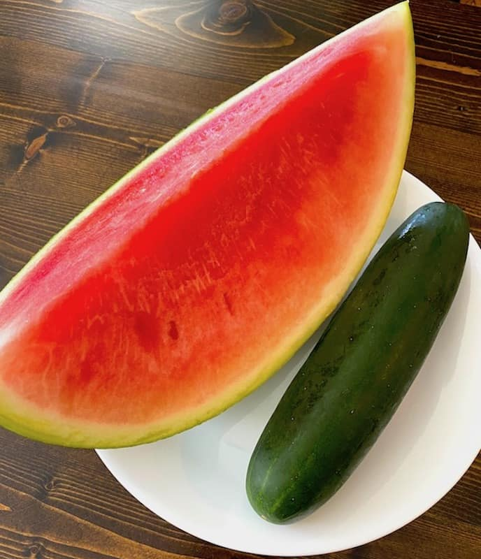 Watermelon slice and cucumber