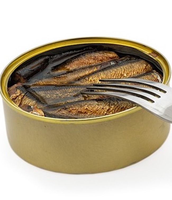 anchovies in a can