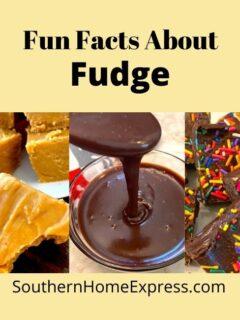 different types of fudge